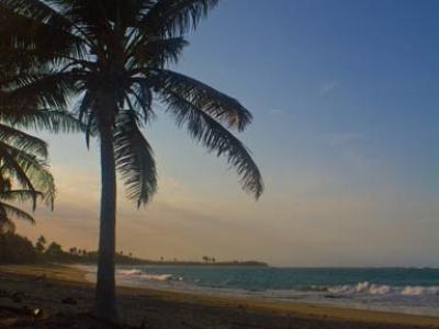 adam_gallagher_cabarete_kite-beach_mg_3075