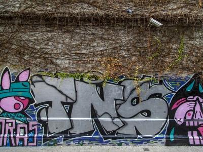 adamgallagher_graffiti_4399