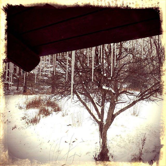 #snowedIn